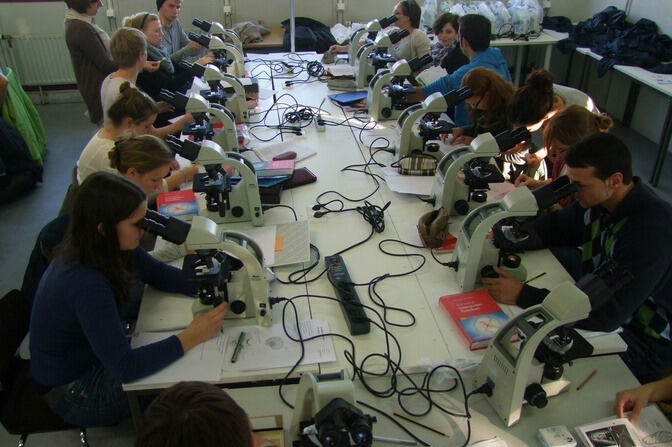 Studnets working with a microscope